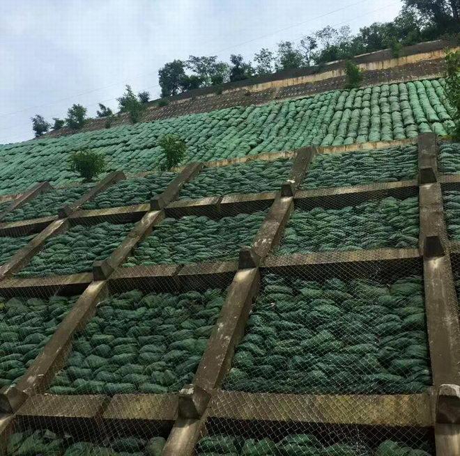 生态袋护坡工程展示