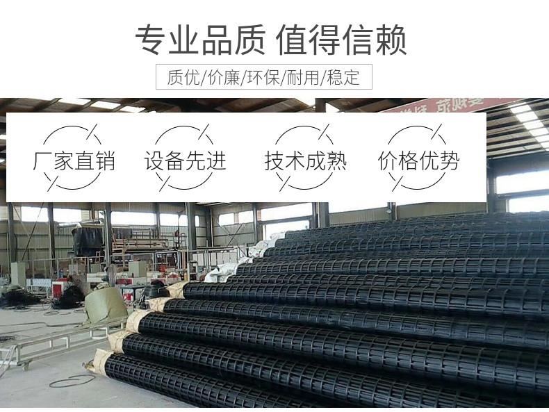 塑料土工格栅厂家